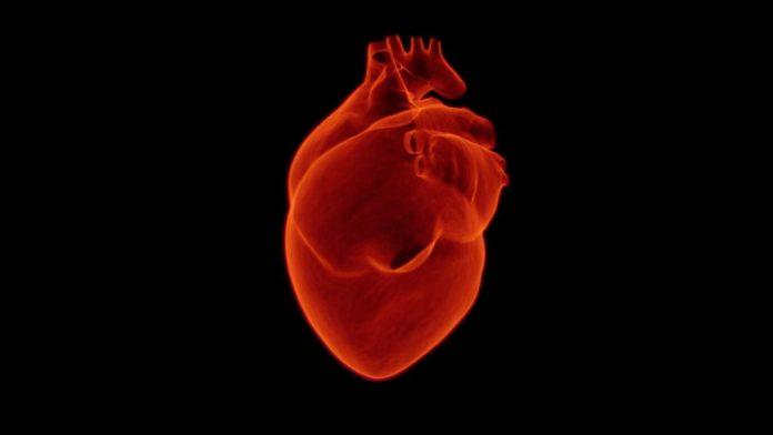 asam lambung naik jantung berdebar