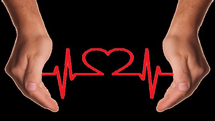 alasan mengapa kesehatan organ peredaran darah itu penting