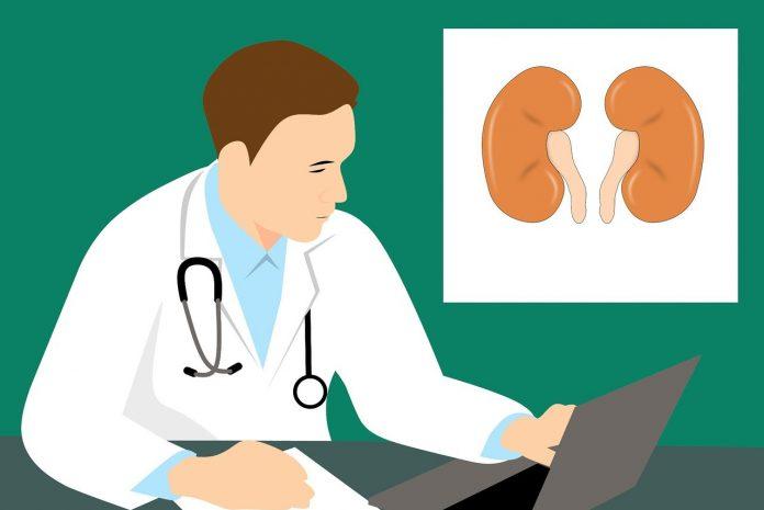 kode icd 10 ckd diagnosis gagal ginjal kronis